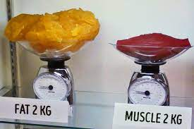 eliminare massa grassa aumentare massa magra