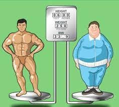 indice di massa grassa