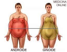 massa grassa ideale donne